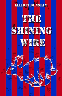 shining wire cover - dithering2